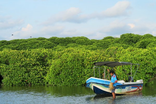 Negombo canal and beach boat ride