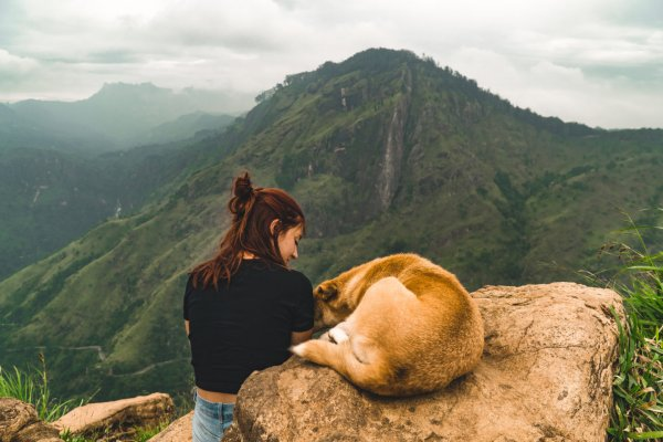 Little Adam's peak hike