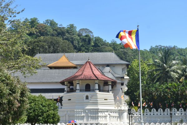 Visit Sri Dalada Maligawa Kandy (Temple of the tooth relic)