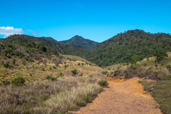 Hiking in Horton Plains